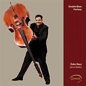 Play & Download Double Bass Fantasy by Odon Racz | Napster
