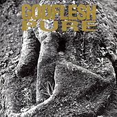 Play & Download Pure by Godflesh | Napster