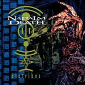 Play & Download Diatribes by Napalm Death | Napster