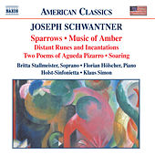 Play & Download SCHWANTNER: Sparrows / Music of Amber by Holst Sinfonietta | Napster