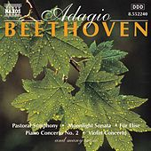 Play & Download BEETHOVEN: Adagio by Slovak Radio Symphony Orchestra | Napster