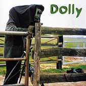 Sunday Afternoon by Dolly