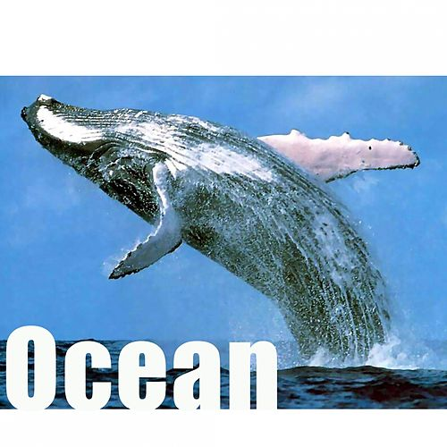 Play & Download Ocean by Hollywood Pictures Orchestra | Napster