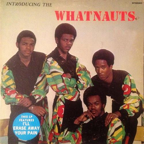 Play & Download Introducing the Whatnauts by The Whatnauts | Napster