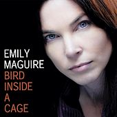 Bird Inside a Cage by Emily Maguire