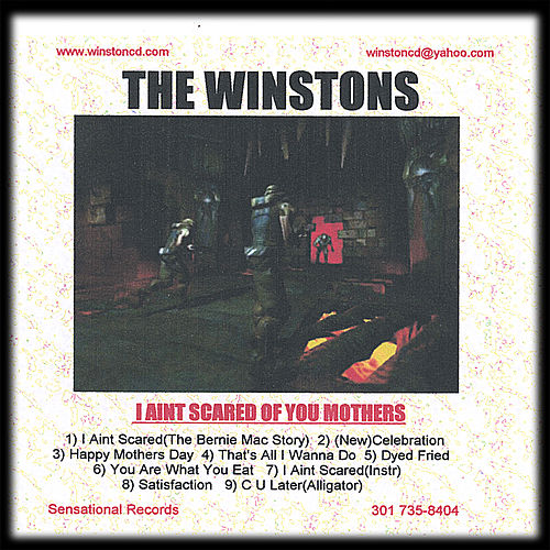 Play & Download I Aint Scared Of You Mothers by The Winstons | Napster