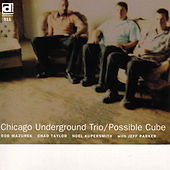 Play & Download Possible Cube by Chicago Underground Duo | Napster