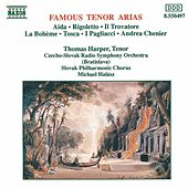 Play & Download Famous Tenor Arias by Various Artists | Napster