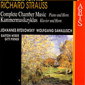 Play & Download Strauss: Complete Chamber Music - 3 Piano & Horn by Various Artists | Napster