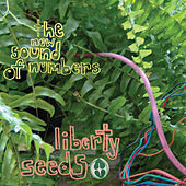 Play & Download Liberty Seeds by The New Sound Of Numbers | Napster