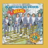 Play & Download Serie De Coleccion 15 Autenticos Exitos by Los Muecas | Napster