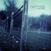 Kenotic by Hammock