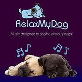 Play & Download Pet Relaxation - Music to Relax Dogs and Encourage Sleep - Fight Against Separation Anxiety by Relaxmydog | Napster