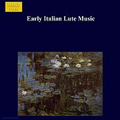 Play & Download Early Italian Lute Music by Franklin Lei | Napster
