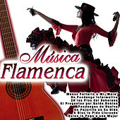 Play & Download Música Flamenca by Various Artists | Napster
