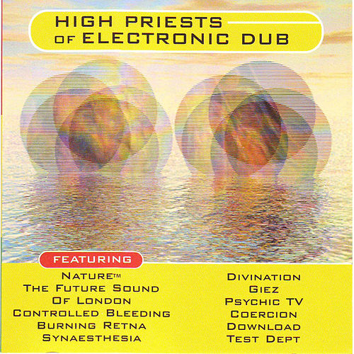 High Priests Of Electronic Dub by Various Artists