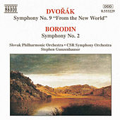 Play & Download DVORAK: Symphony No. 9 / BORODIN: Symphony No. 2 by Various Artists | Napster