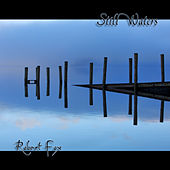 Still Waters by Robert Fox