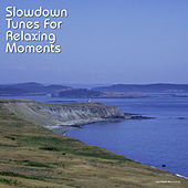 Play & Download Slowdown Tunes for Relaxing Moments by Various Artists | Napster