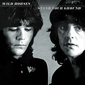 Play & Download Stand Your Ground by Wild Horses | Napster