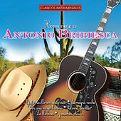 Play & Download Homenaje by Antonio Bribiesca | Napster