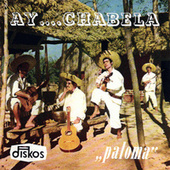 Play & Download Ay Chabela by Paloma | Napster
