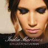 Los Gatos no Ladran by India Martinez