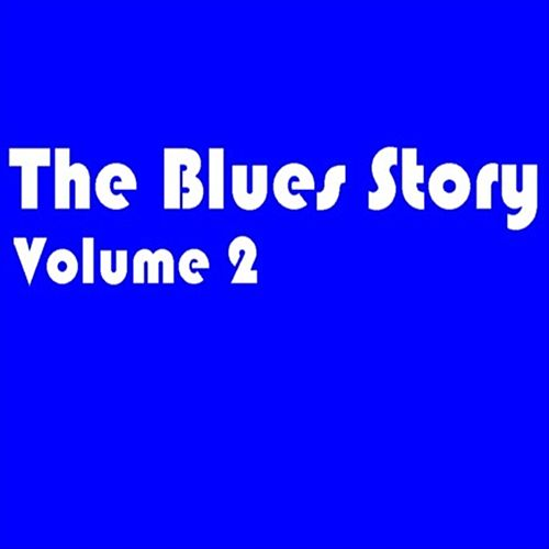 Play & Download The Blues Story - Volume 2 by Various Artists | Napster