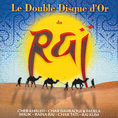 Le Double Disque D'or Du Rai by Various Artists