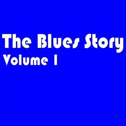 The Blues Story - Volume 1 by Various Artists