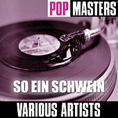 Pop Masters: So Ein Schwein by Various Artists