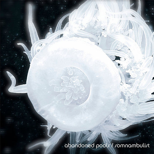 Play & Download Somnambulist by Abandoned Pools | Napster