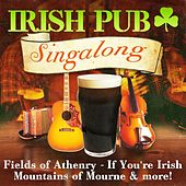 Play & Download Irish Pub Singalong by Various Artists | Napster