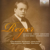 Reger Collection by Various Artists