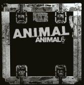 Animal 6 by A.N.I.M.A.L.