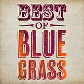 Play & Download Best of Bluegrass by Various Artists | Napster