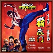 Fist of Fury Remixes by Liquid Stranger