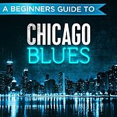 A Beginners Guide to: Chicago Blues von Various Artists