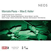 The Works of Marcela Pavia & Max E. Keller by Various Artists