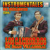 Play & Download Instrumentales El Milenio by Los Cachorros de Juan Villarreal | Napster