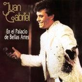 Play & Download En El Palacio De Bellas Artes by Juan Gabriel | Napster