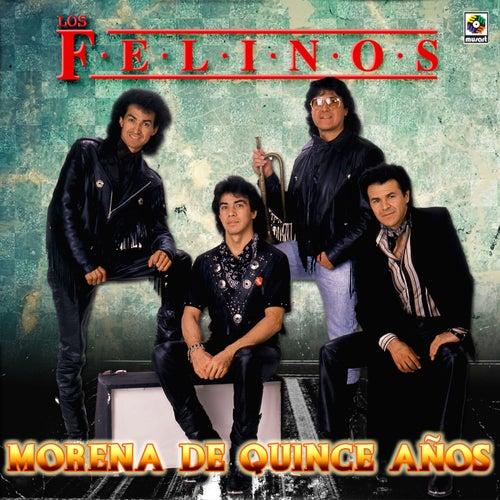 Morena de Quince Años by Felinos