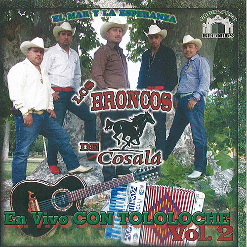Play & Download Tololoche 2 by Los Broncos De Cosala | Napster