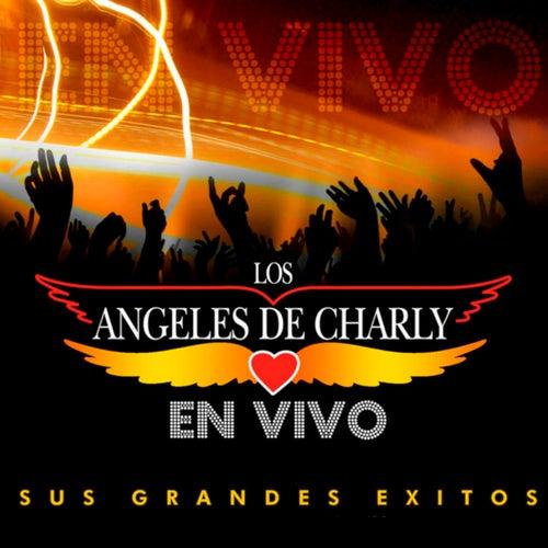 En Vivo - Sus Grandes Exitos de Los Angeles De Charly