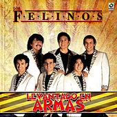 Play & Download Levantando en Armas by Felinos | Napster