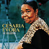 Cesaria Evora - Camden Collection von Cesaria Evora
