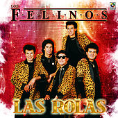 Play & Download Las Rolas by Felinos | Napster