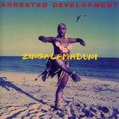 Zingalamaduni by Arrested Development