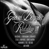 Goose Bumps Riddim by Various Artists