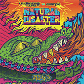 Play & Download Natural Disaster by Laidback Luke | Napster